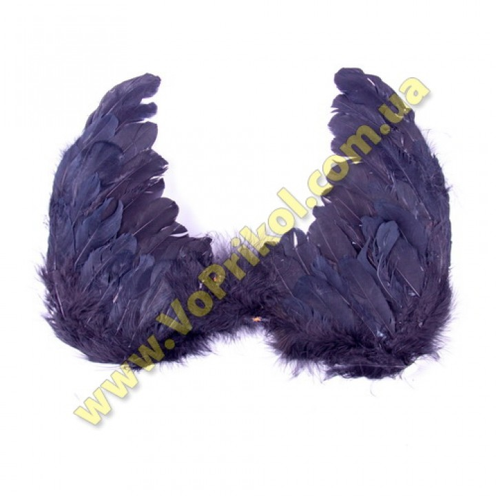 "Крылья ""Черный ангел"""